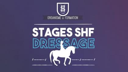 Lire l'acutalité Ouverture des Stages Dressage Jeunes Chevaux 2018