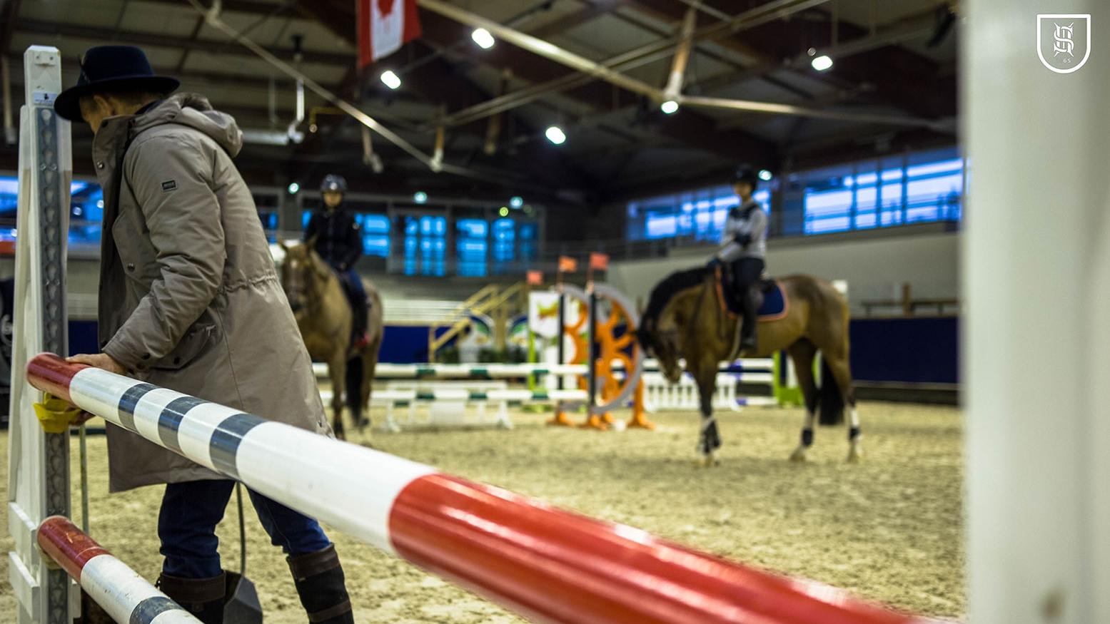 Lire l'acutalité Laurent Elias, formateur de jeunes chevaux pour la SHF