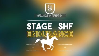 Lire l'acutalité Ouverture du stage jeunes chevaux Endurance 2018