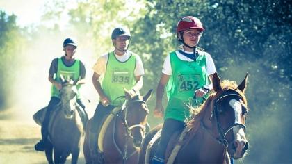 Lire l'acutalité Endurance 2018 : dotations revalorisées et organisateurs soutenus financièrement