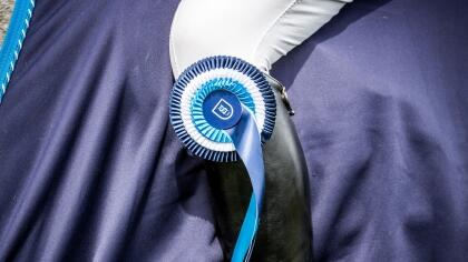 Epizootie Herpèsvirose : Modalités des qualifications aux Finales SHF