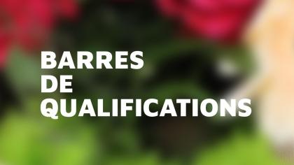 Lire l'acutalité Barres de qualification Concours Complet 2018