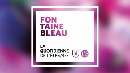 Lire l'acutalité 5ème et avant-dernière journée de Cycle classique à Fontainebleau