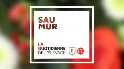 Lire l'acutalité Dernière journée de Quotidienne à Saumur !
