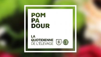 Lire l'acutalité Deuxième jour à la Grande Semaine de Pompadour et une nouvelle Championne !