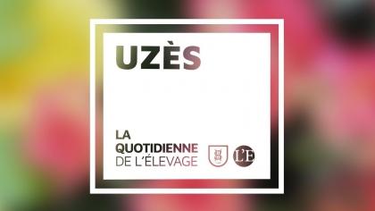 Lire l'acutalité Uzès 2018 : La Quotidienne de l'Elevage - Jour 1