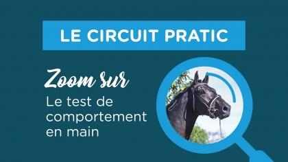 Circuit PRATIC : Zoom sur le test de comportement en main