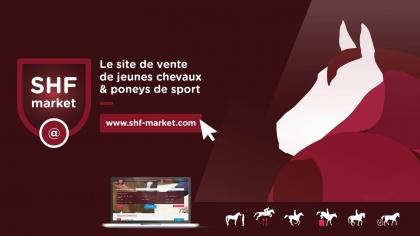 Lire l'acutalité Grandes Semaines 2019 : les services pour vos chevaux et poneys à vendre