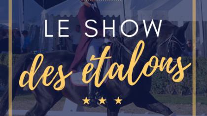 Lire l'acutalité Saumur 2019 Nouveauté : Le Show des Etalons