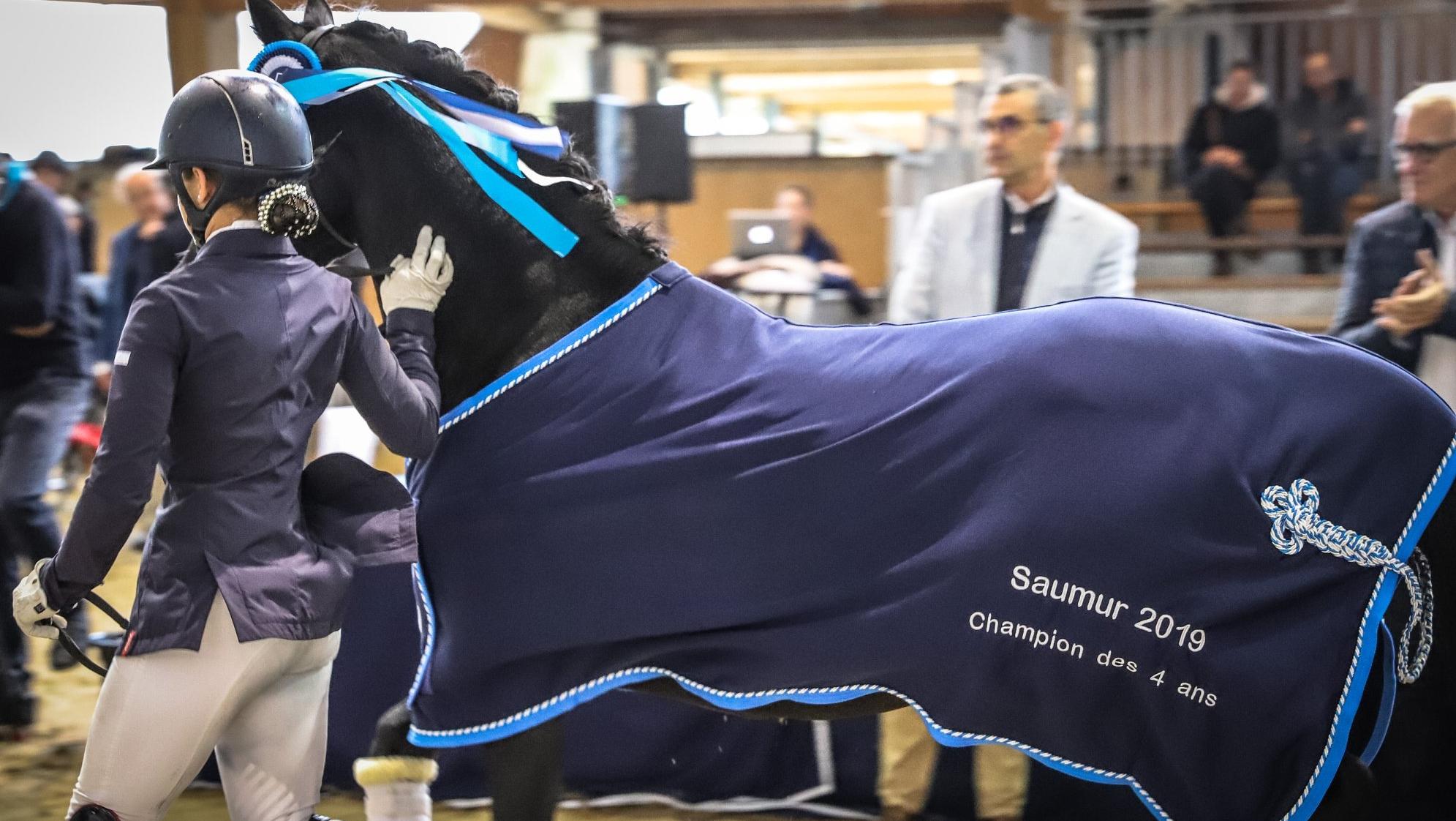 Saumur 2019 : l'élevage Fast frappe fort dans le Cycle classique...