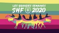 Les Grandes Semaines SHF 2020