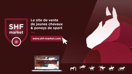 Les services SHF Market pour vos chevaux et poneys à vendre