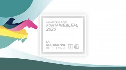Lire l'acutalité Résultats du Championnat des 6 ans et impressions de commerçants français et...