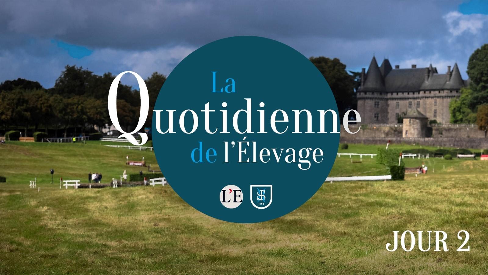 Lire l'acutalité Focus aujourd'hui sur le Stud-book Selle Français et rencontre avec le Champion...
