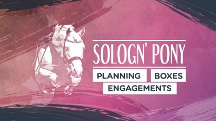 Sologn'Pony 2021 : Planning, Boxes et Engagements