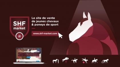 SHF market, le service pour vos chevaux et poneys à vendre