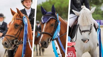 Sologn'Pony 2021 : Les criteriums ont leurs vainqueurs !